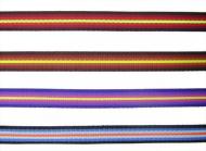 Gradation Polyester Webbing