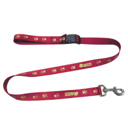 Reflective Leash: Pet Collar Leash