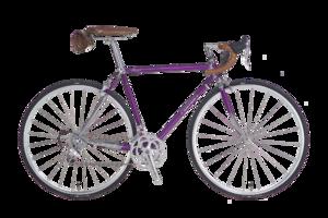 ROYAL 紫色
