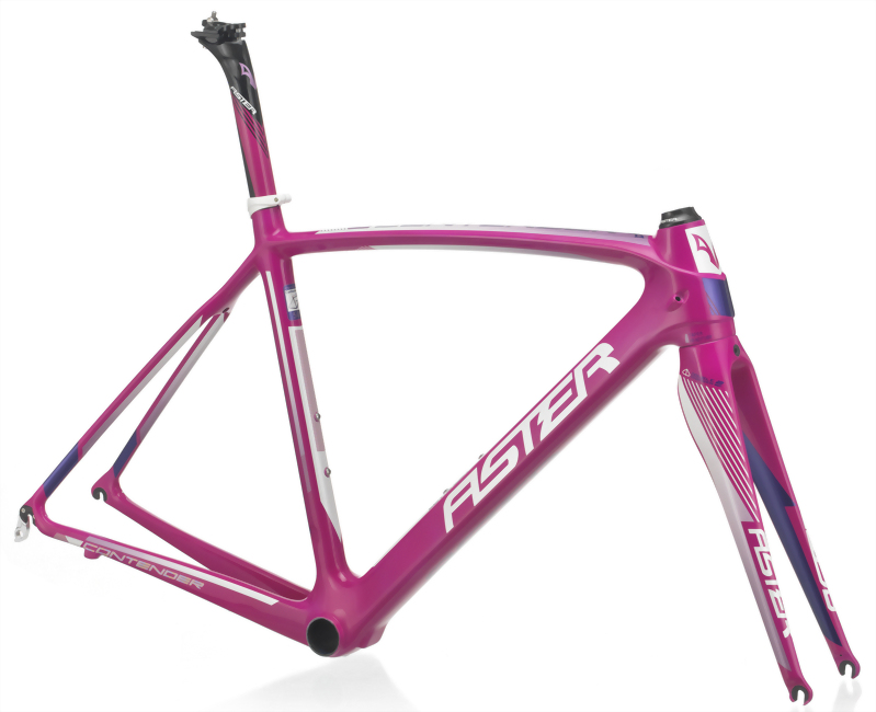 CONTENDER 桃紅紫