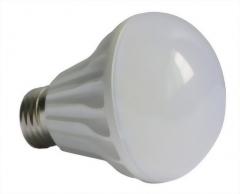 01-04-15-Bulb L series
