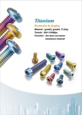 Titanium Alloy Fasteners (Titanio)