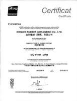 CS-ISO 14001