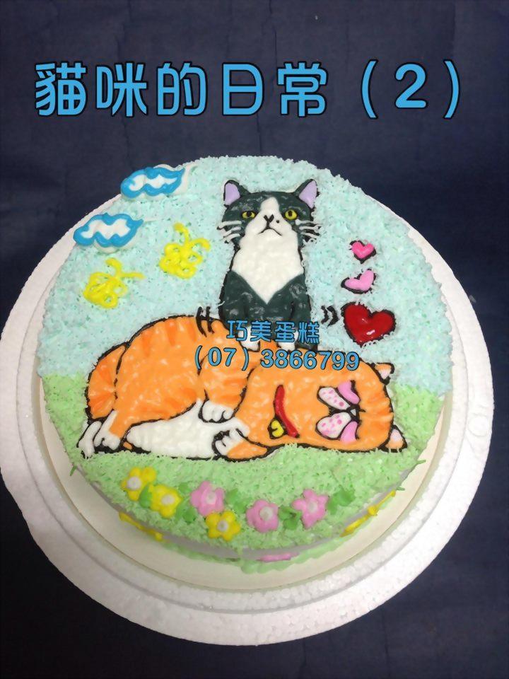 貓咪的日常(2)