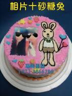 相片十砂糖兔