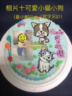 相片+可愛小貓小狗 (最小8吋) (寫字另計)