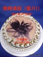 蜘蛛滿版 (圖片1)