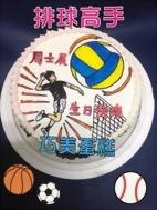排球高手造型蛋糕