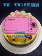 ex-tr15相機造型蛋糕