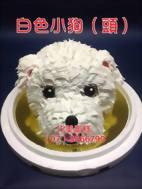 白色小狗(頭)