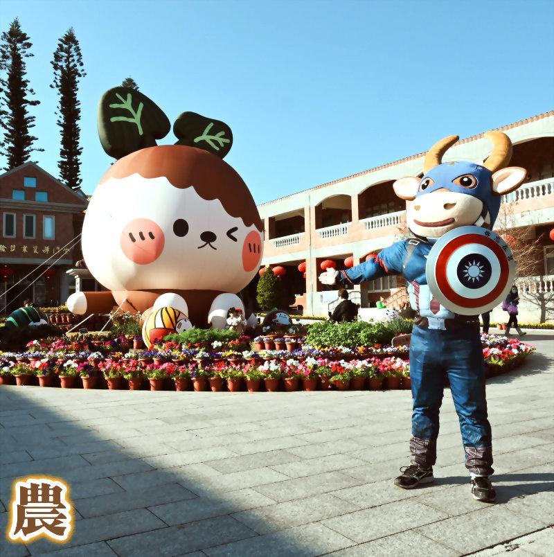 ชุดตุ๊กตา (ชุดหุ่นกระบอก) - หัวหุ่นกำหนดเอง kinmen การเลี้ยงสัตว์ห้องปฏิบัติการ - กัปตันโกลเด้น 1