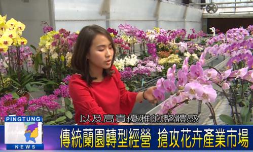 屏東新聞報導 - 潮州蘭花商研發「花卉保養品」進軍海外