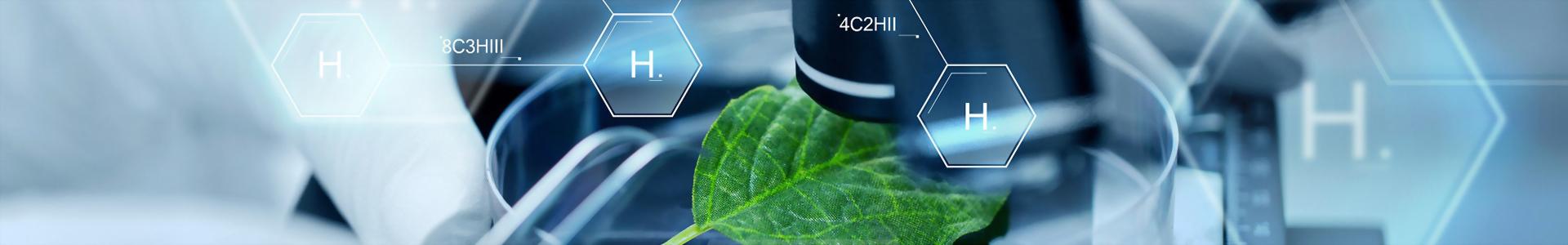 天宜科技 - 植物培養