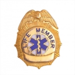 Fire and Med DP Badge