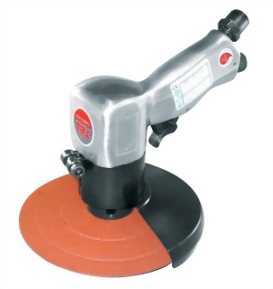 """5"""" High Speed Sander With Iron Guard"""