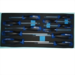 11 Pcs Torx Screwdriver SEt with EVA