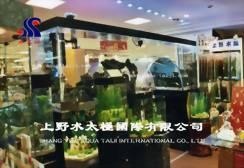 成功路漢神百貨水族專櫃設計、專櫃設計廠商推薦 - 上野水太極