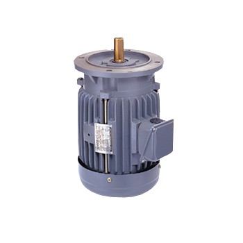 Ac Induction Electric Motors Manufacturer Adlee