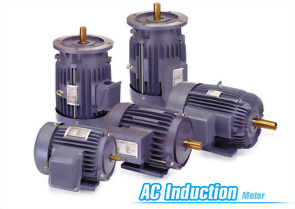 AC induction electric motors