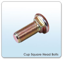 Cup Square Neck Bolts