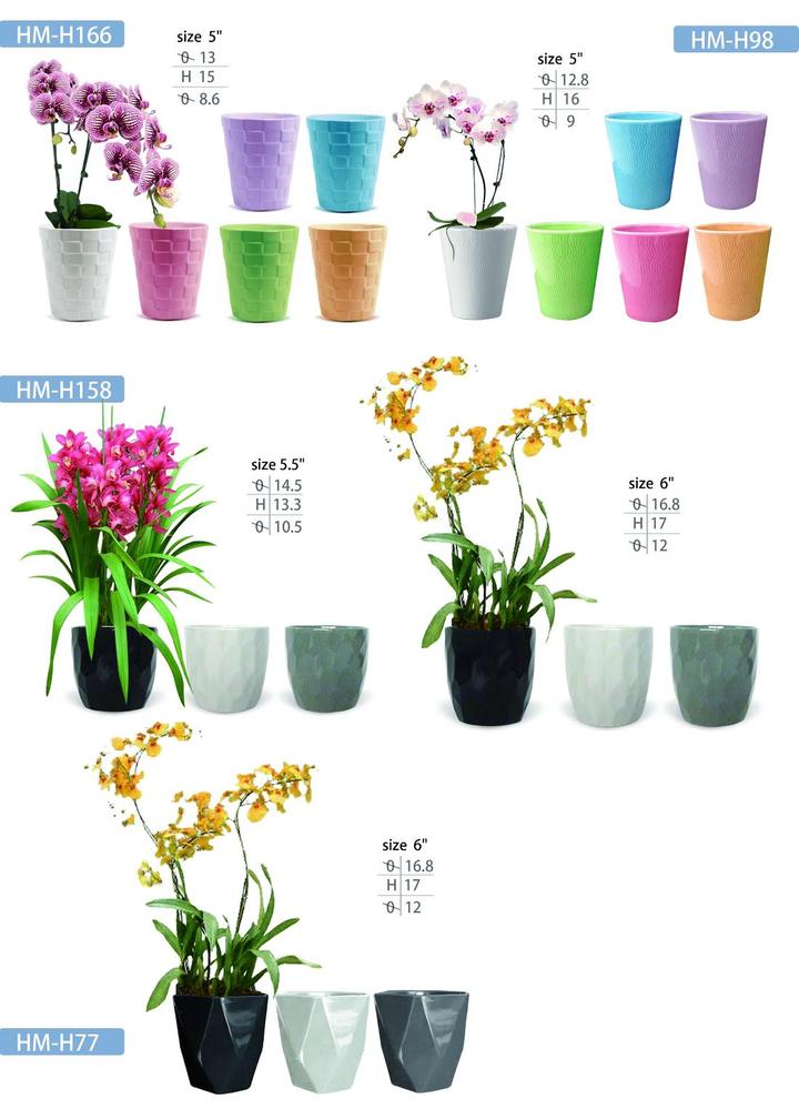 Cramic Pots