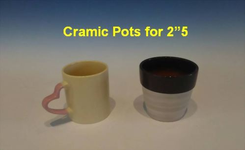 "Cramic Pots for 2""5"