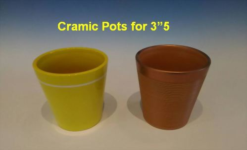 "Cramic Pots for 3""5"