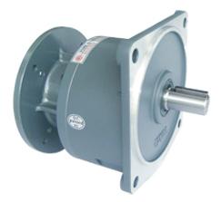 GVM型立式直結型齒輪減速馬達
