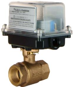 S10-2B電動式球塞閥