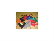 PP Nonwaven Fabric Shopping Bag