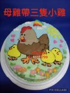 母雞帶三隻小雞