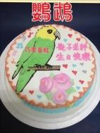 鸚鵡造型蛋糕
