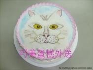 金吉拉貓咪造型蛋糕