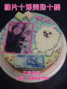 博美狗+錢+相片蛋糕