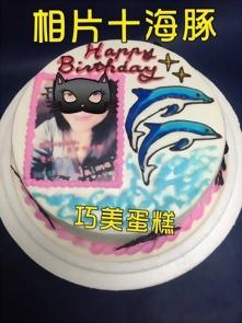 相片+海豚造型蛋糕