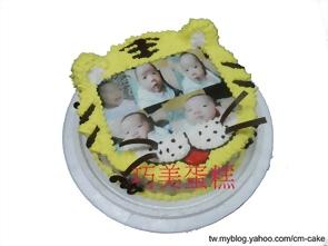 小虎臉+相片蛋糕