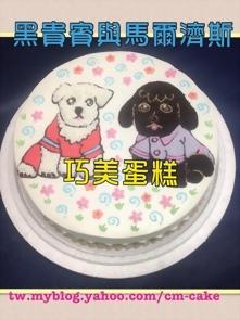 黑貴賓與白馬爾濟斯造型蛋糕