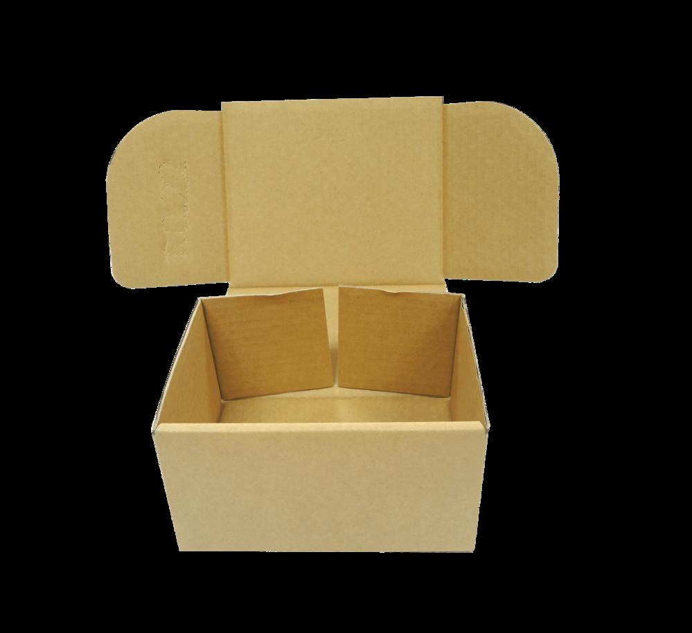 加工紙箱 (範例1)