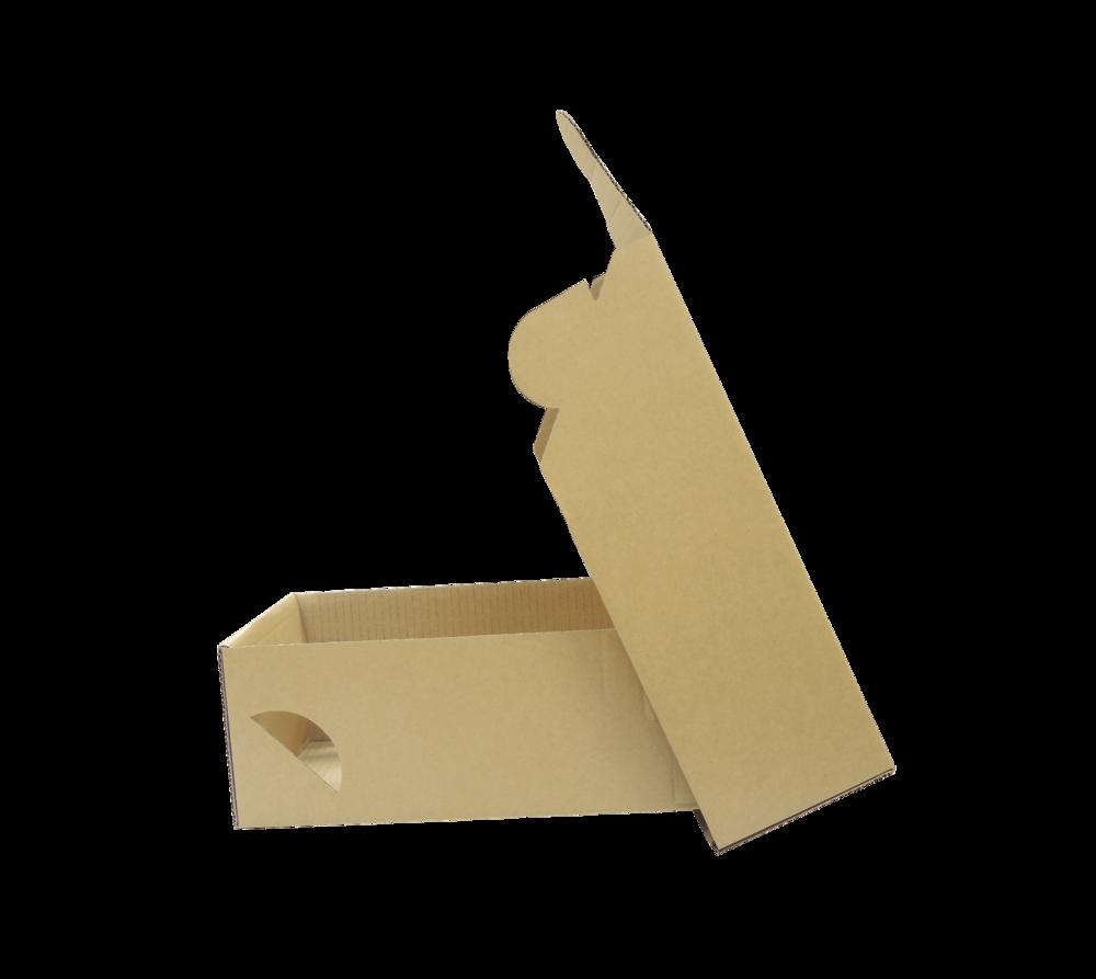 加工紙箱 (範例2)