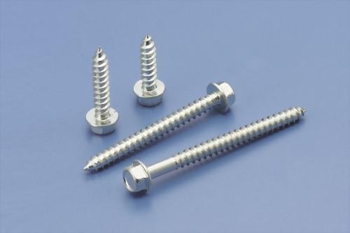 Stainless Steel Screws / Bolt
