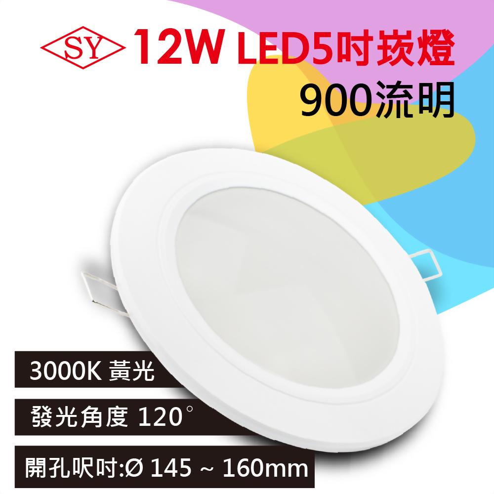 【SY 聲億】12W LED崁燈 15cm黃光