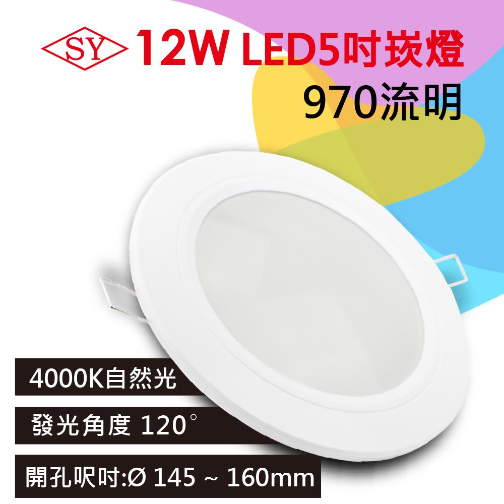 【SY 聲億】12W LED崁燈 15cm自然光