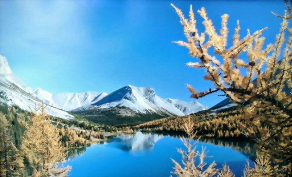 2020暑期遊學團-加拿大溫哥華博學英語學院密集課程+洛磯山脈之旅25天