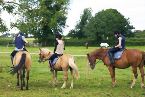 2019 英語加騎馬課程-Wycliffe College