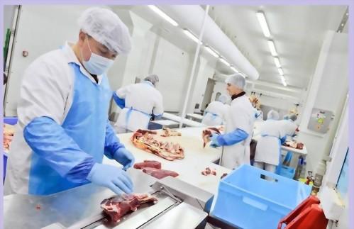澳洲打工渡假~肉品工廠工作安排_Meat Industry Job Placement