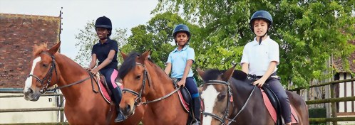 École des Roches-法語/英語-騎馬課程 French/English-Horse Riding