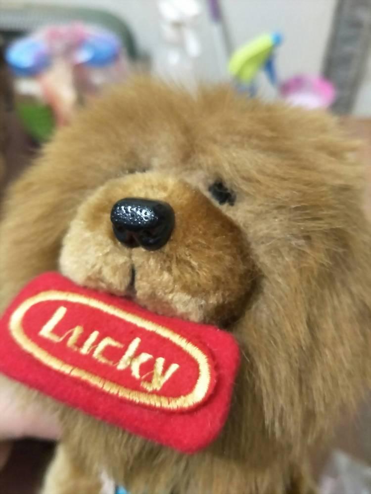 絨毛娃娃 | 鬆獅犬(富邦銀行) 11