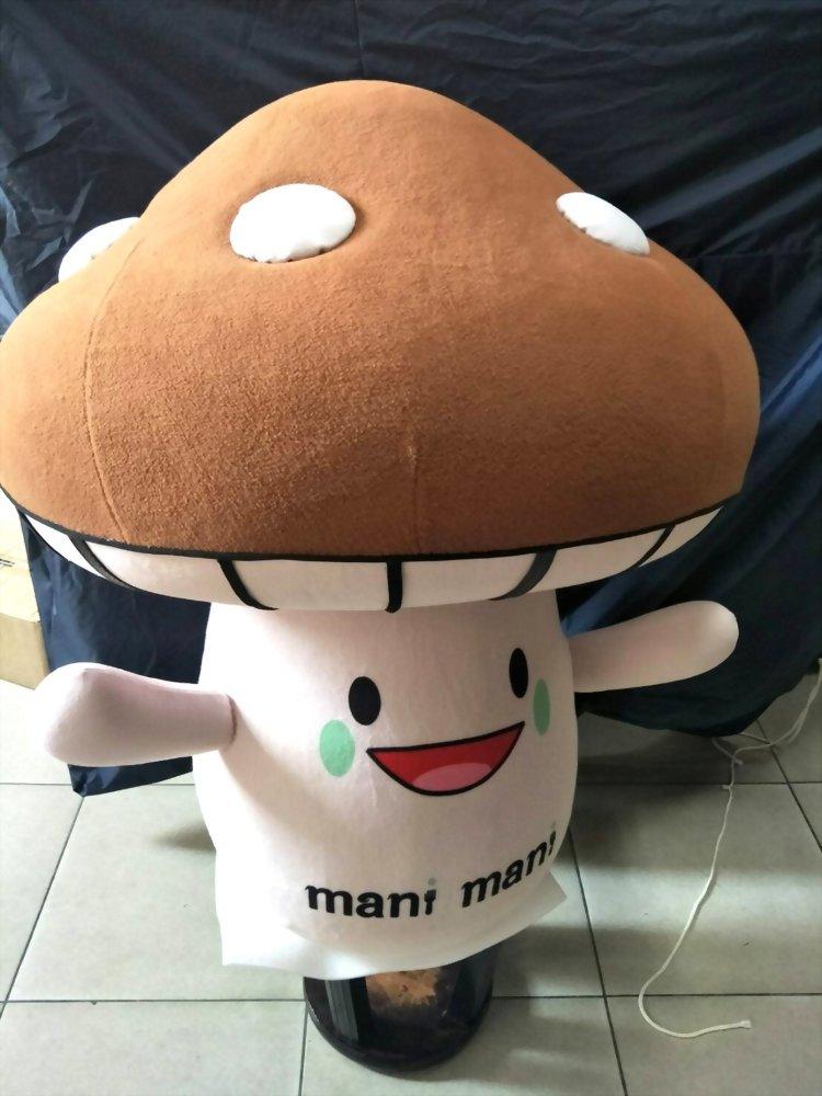 Große Puppe | Handwerkskunst - Mani Mani Italienisches Gemüserestaurant - Pilz Große Puppe 4