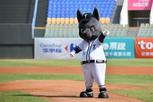 職棒大聯盟 台灣犬 6