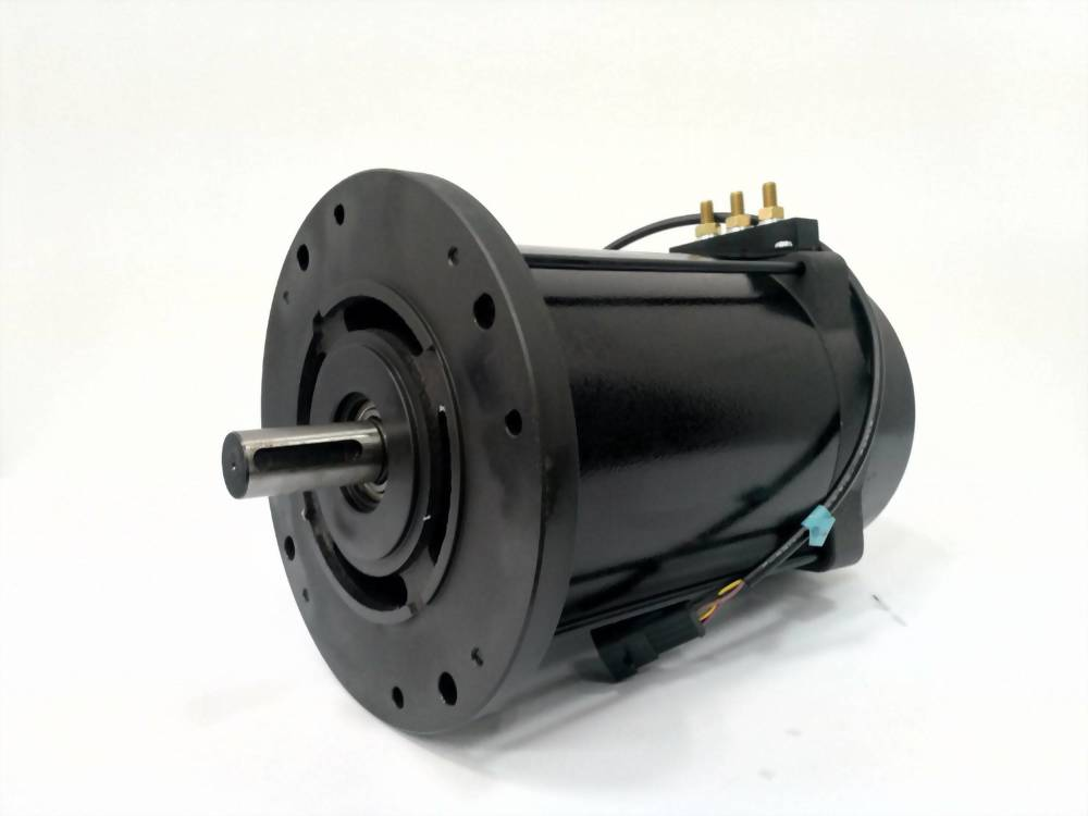 AC Low Voltage Motor
